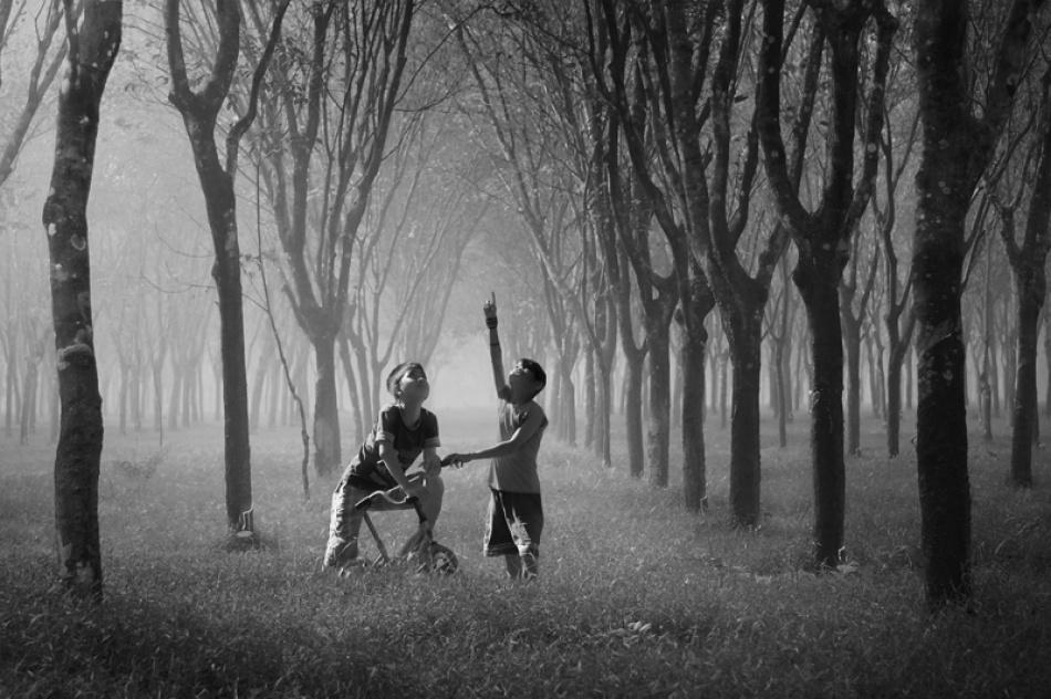 A piece of fine art art photography titled Best Friend by A.madestra. W