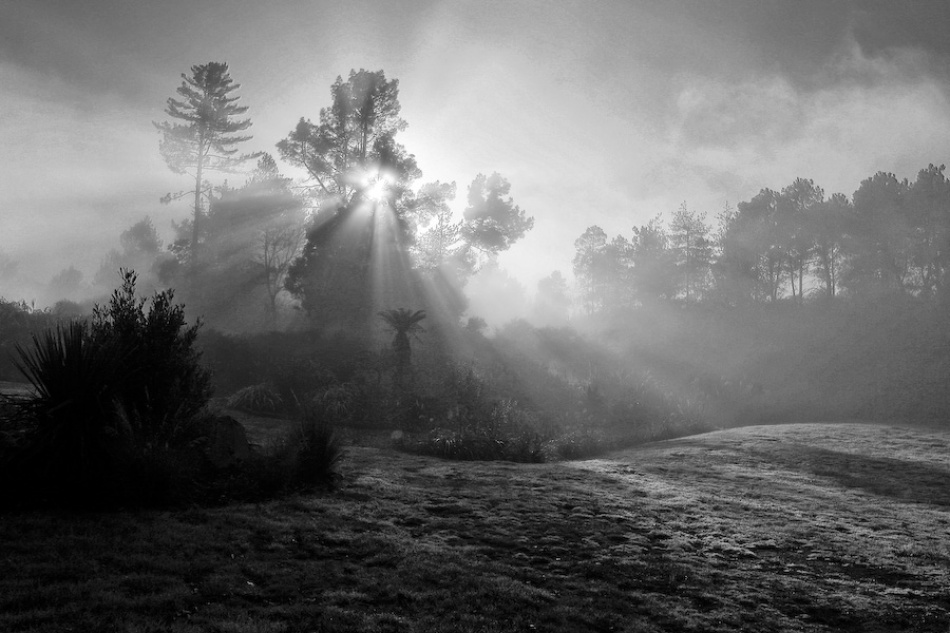 A piece of fine art art photography titled New Zealand's Misty Sunrise by Miriam Amo