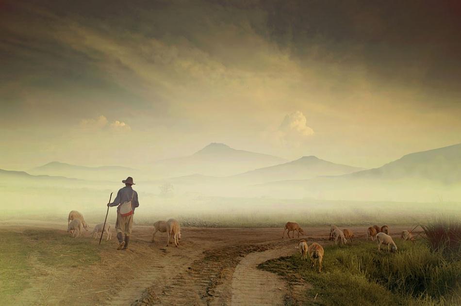 A piece of fine art art photography titled Shepherd by Teuku Jody Zulkarnaen