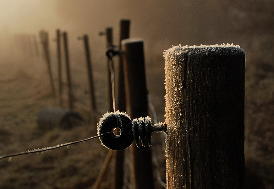 A piece of fine art art photography titled The Fence by Ivar Smith-Nilsen