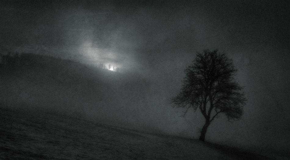 A piece of fine art art photography titled November by Henrik Spranz