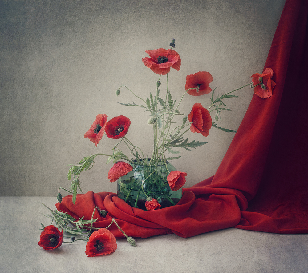 A piece of fine art art photography titled Red by Dimitar Lazarov - Dim