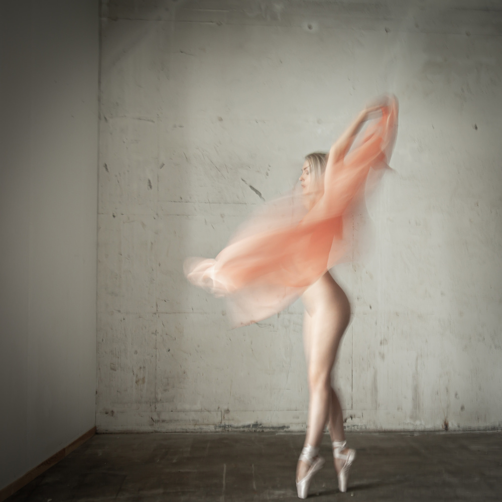 View this piece of fine art photography titled Bloom by Eddy Verloes