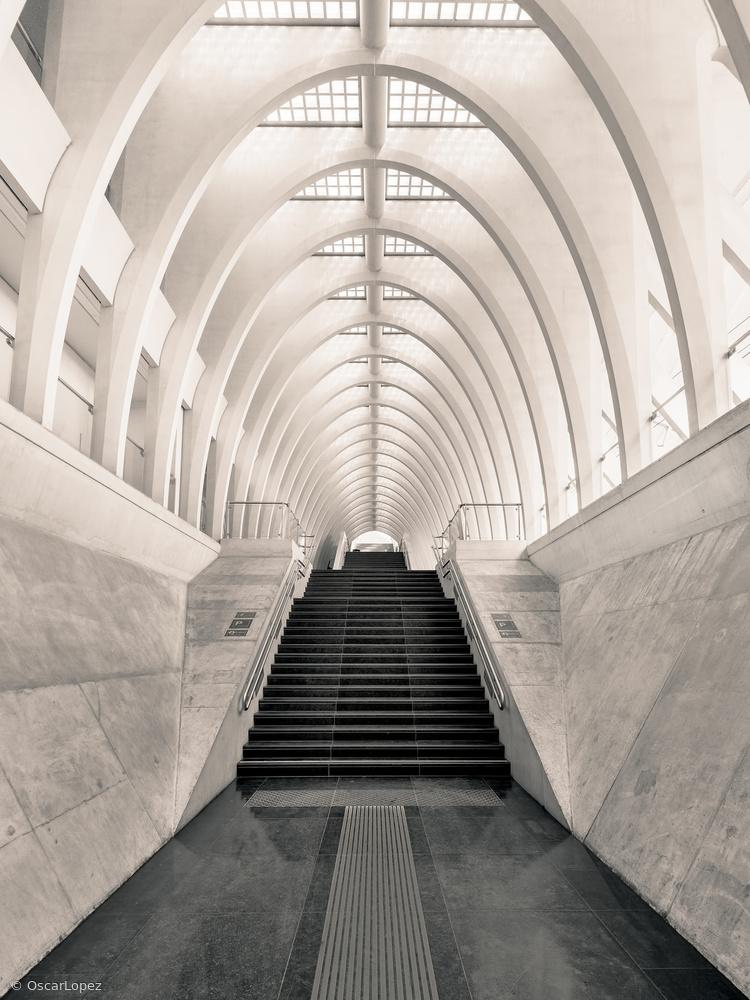 Inside Calatrava