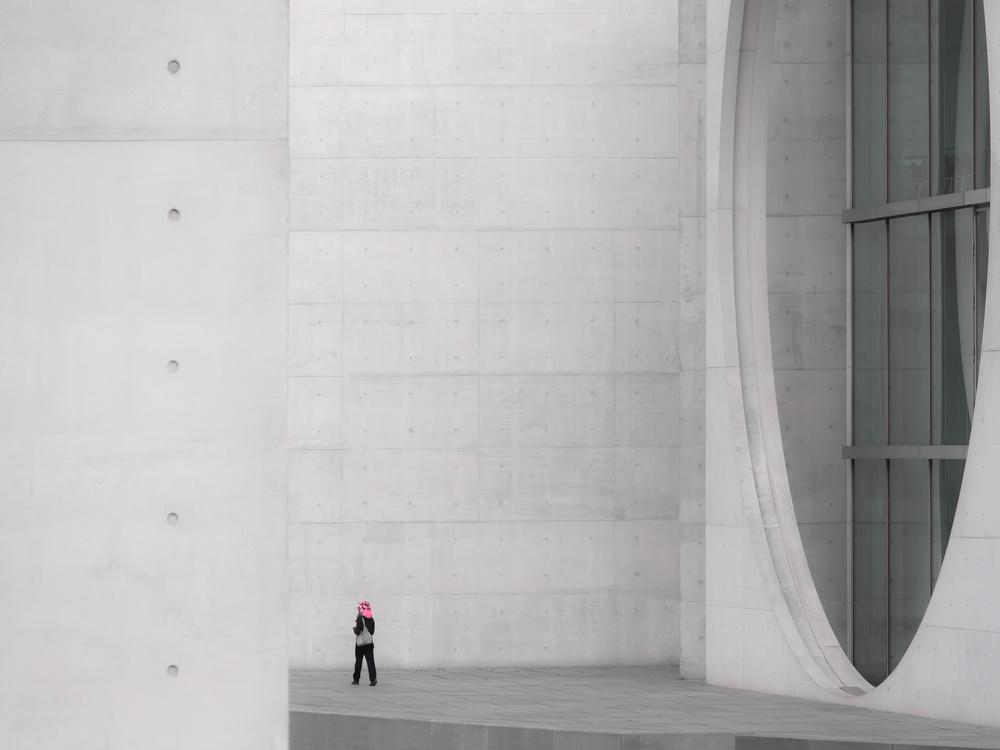 A piece of fine art art photography titled Pink by Klaus Lenzen