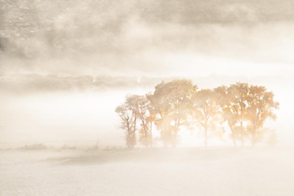 A piece of fine art art photography titled Autumn Dreams by John Fan