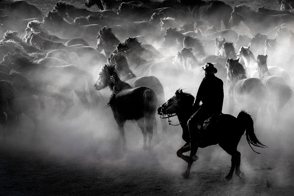 A piece of fine art art photography titled Horses by Caner Başer