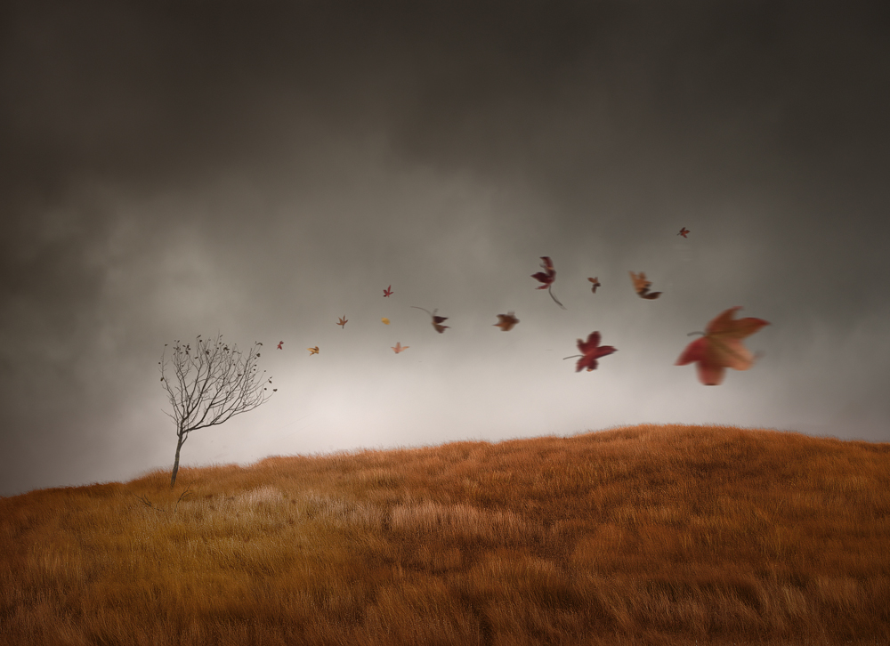 Windy surrealism