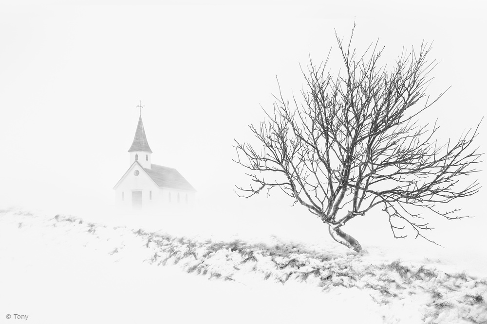 View this piece of fine art photography titled In Snowstorm by Tony  許