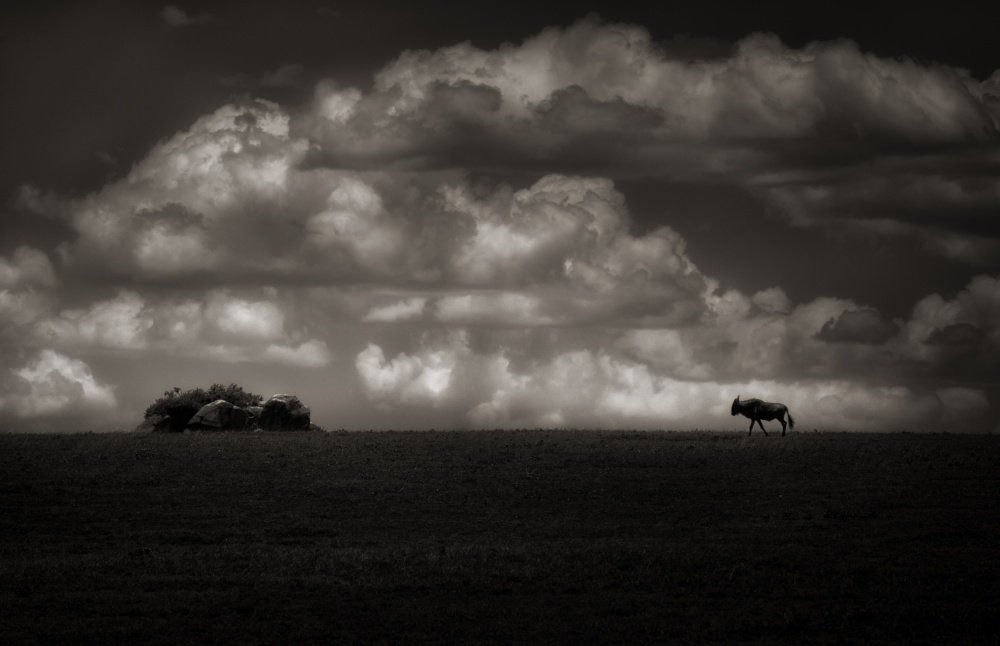 A piece of fine art art photography titled Alone by Keith Andrews