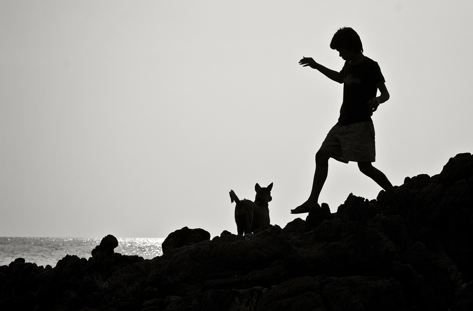 A piece of fine art art photography titled Companions by Steve Smith