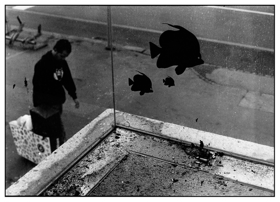 A piece of fine art art photography titled Urban Fishtank by Remo Rufer