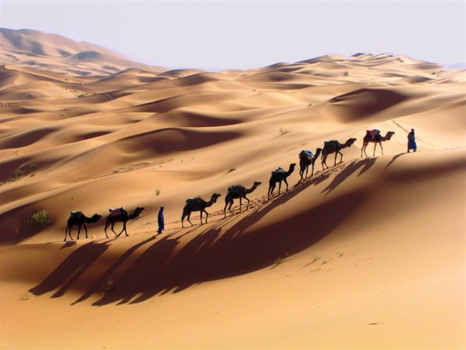 A piece of fine art art photography titled Merzouga Meharee by alfzecat