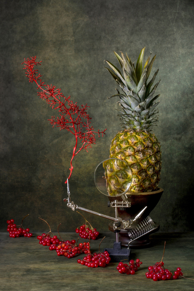 View this piece of fine art photography titled Still life with viburnum and pineapple by Brig Barkow