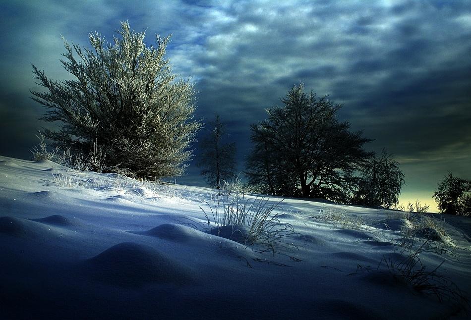 A piece of fine art art photography titled Evening Light by Janusz Wanczyk