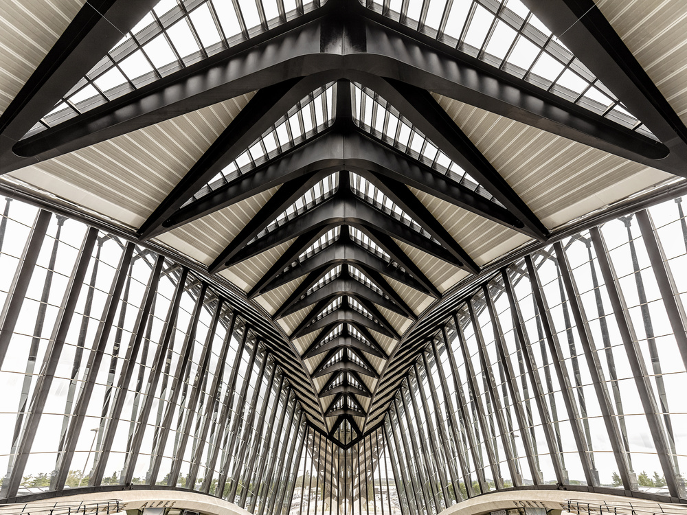 A piece of fine art art photography titled Train Station Lyon Saint-Exupéry TGV by Herbert A. Franke