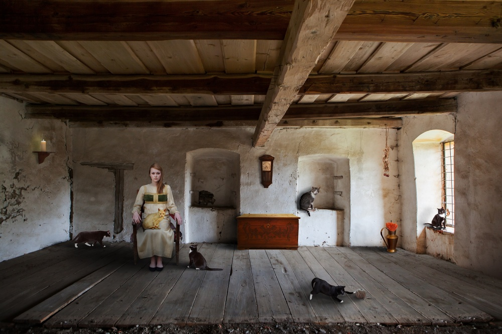 A piece of fine art art photography titled The Cat Queen by Martin Marcisovsky