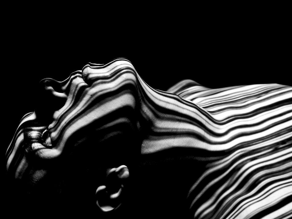 A piece of fine art art photography titled Zebra by Denis Butorac