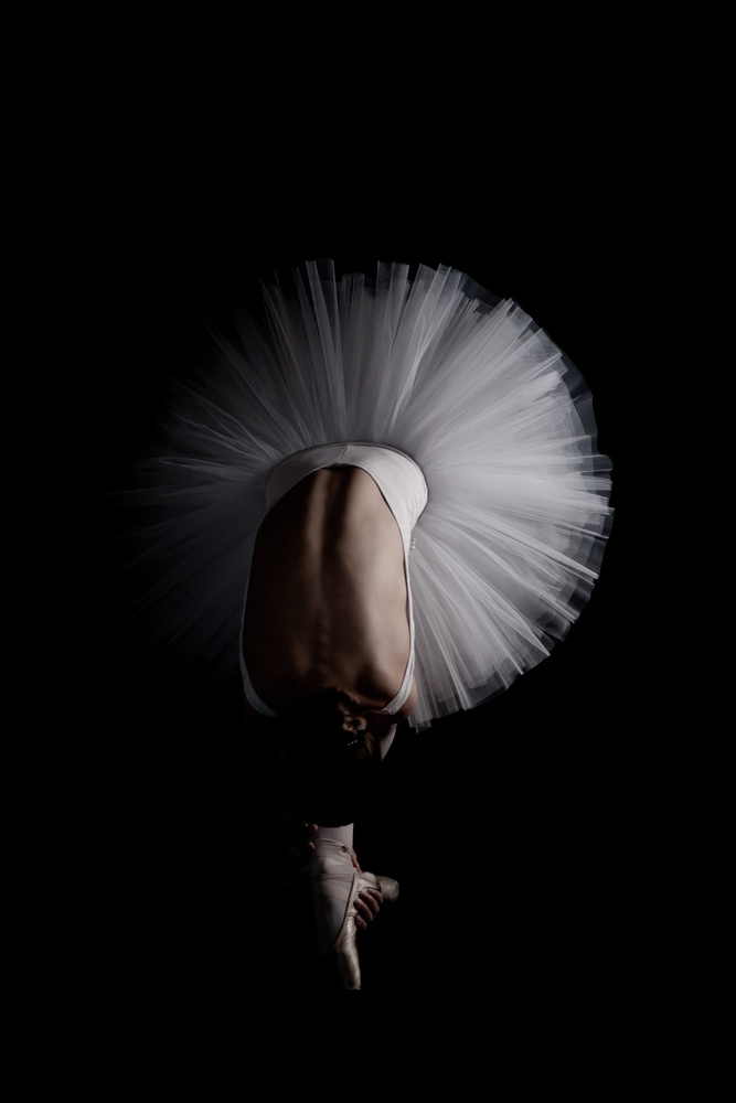 A piece of fine art art photography titled Flower by Eugenio Cini