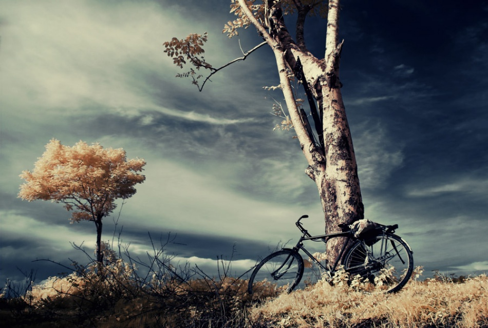 A piece of fine art art photography titled Parking by Thaib Chaidar