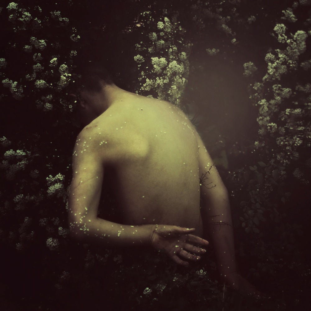 A piece of fine art art photography titled Firefly by Marko Nadj
