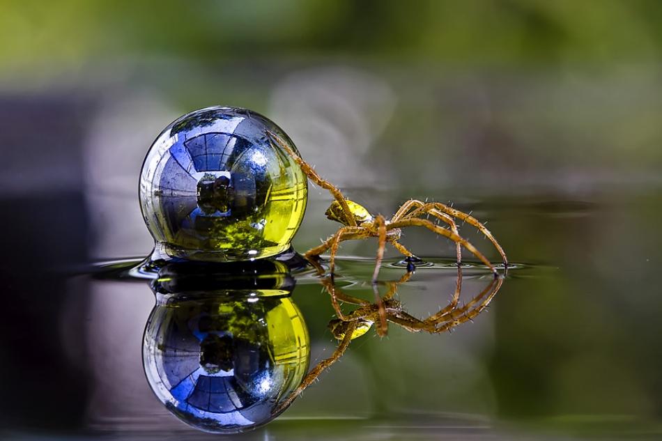 A piece of fine art art photography titled Leave the World by Nunu Rizani
