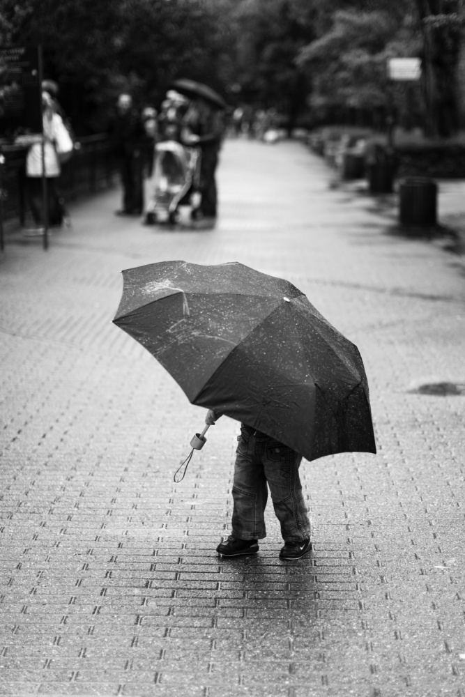 A piece of fine art art photography titled Rainy Day by Liesbeth van der Werf