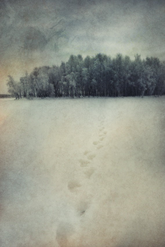A piece of fine art art photography titled Untitled by Tomas Nygren