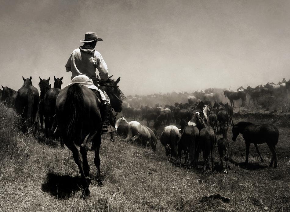 A piece of fine art art photography titled TheGuardian by Antonio Arcos aka fotonstudio
