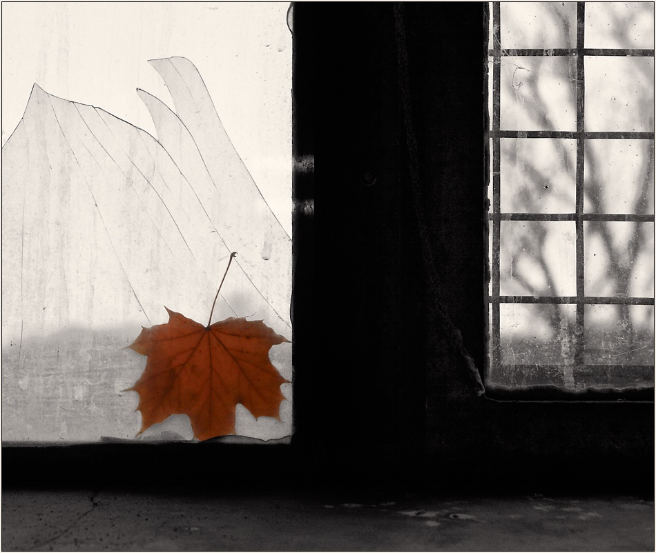 A piece of fine art art photography titled November Melancholy by Dirk Eidner