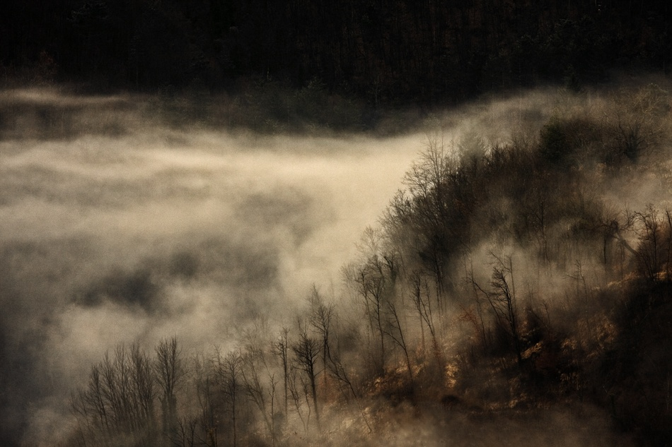 A piece of fine art art photography titled Desolation by andrea lorenzetti