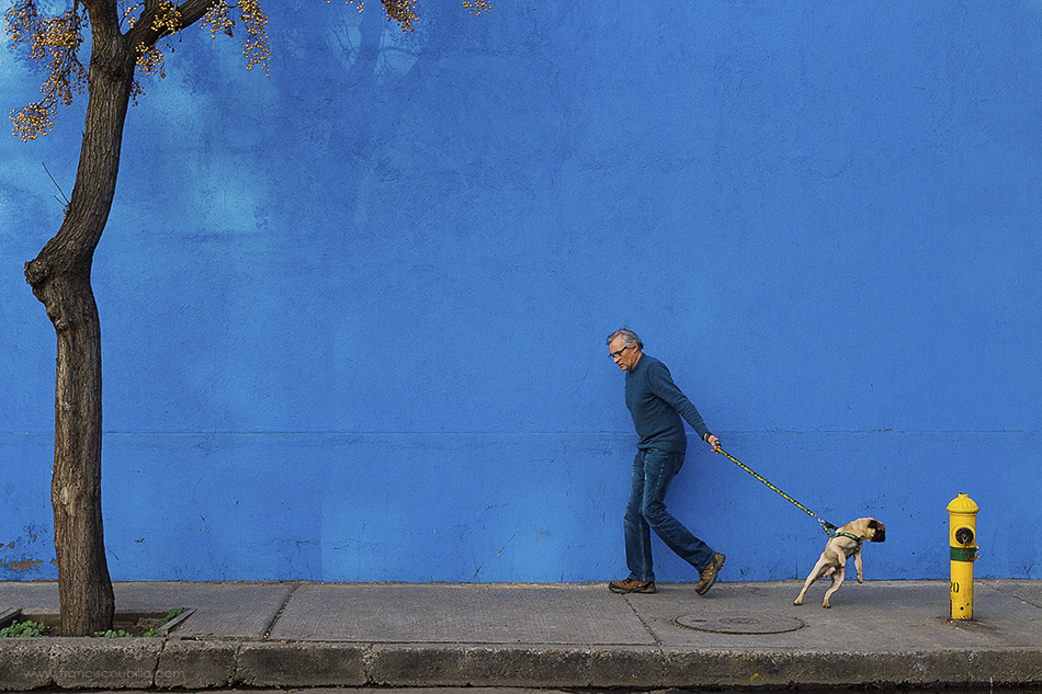 A piece of fine art art photography titled A Man and His Dog by Francisco Ubilla