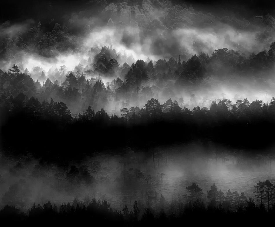 A piece of fine art art photography titled Misty Woodlands by John Colbensen