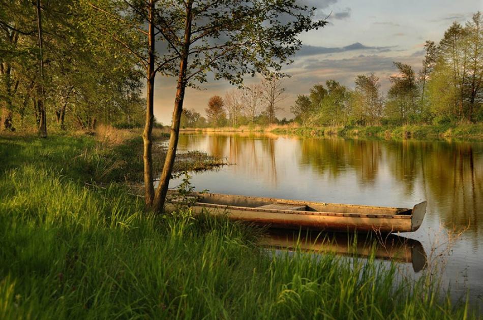 A piece of fine art art photography titled Landscape by rex_rex