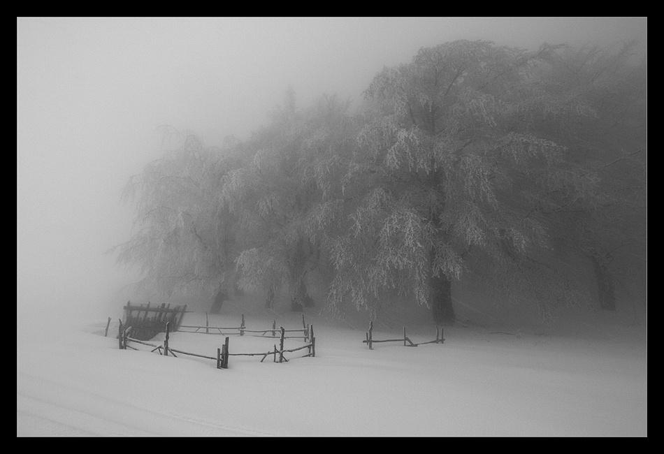 A piece of fine art art photography titled Frozen Air by simay zsolt