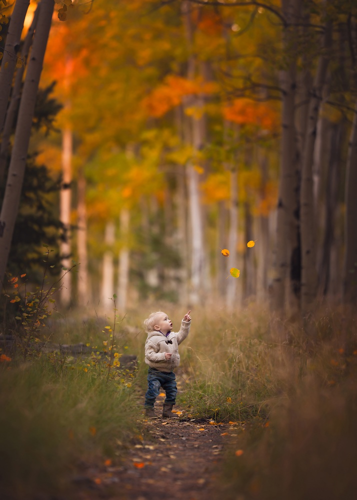 """A piece of fine art art photography titled """"Autumnthe Year's Last, Loveliest Smile  - William Cullen Bryant by Lisa Holloway"""