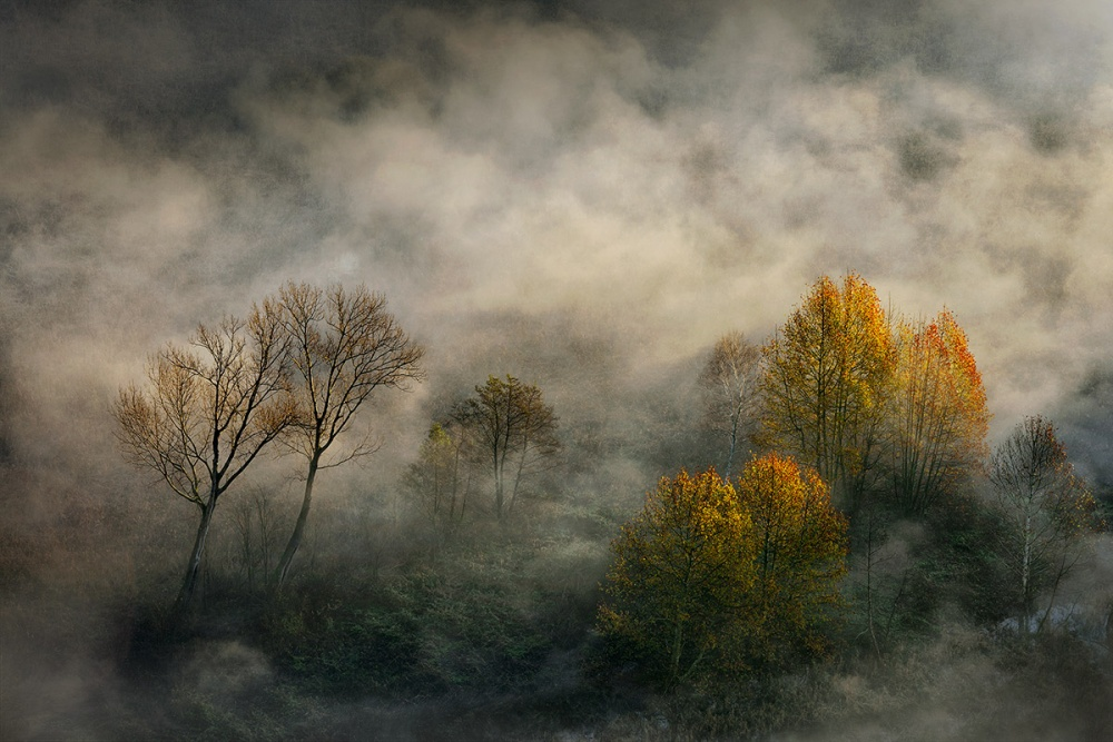 A piece of fine art art photography titled Seasons by Roberto Marini