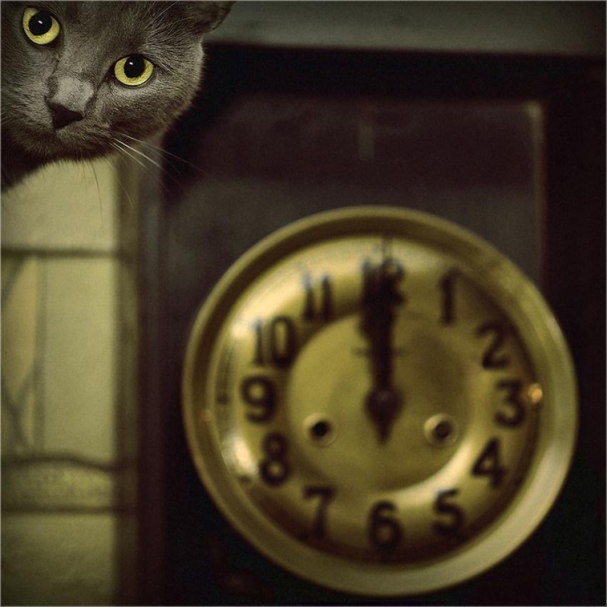 A piece of fine art art photography titled Time by wojciech7777