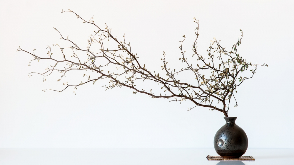 A piece of fine art art photography titled Vase and Branch by prbimages