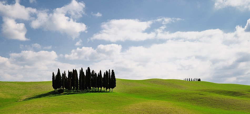 A piece of fine art art photography titled Oasis by Vincenzo Sagnotti