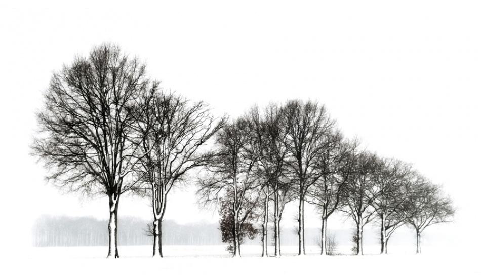 A piece of fine art art photography titled Ten by Marian Clemens