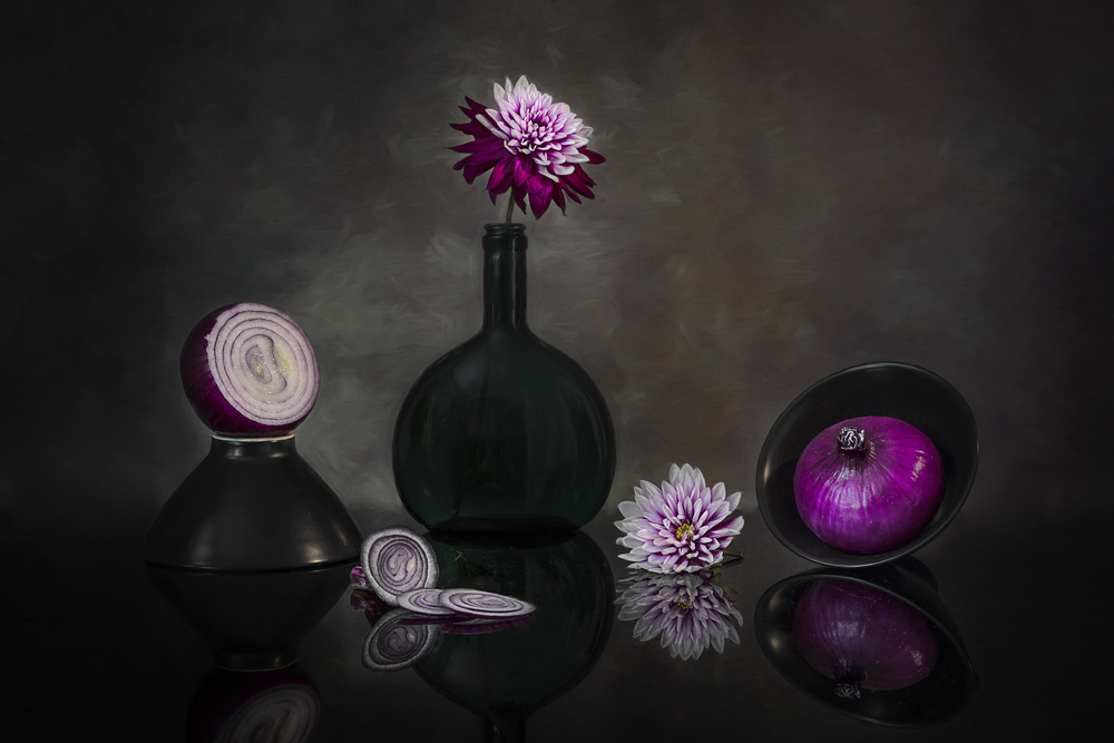 A piece of fine art art photography titled Purple Onion by Lydia Jacobs