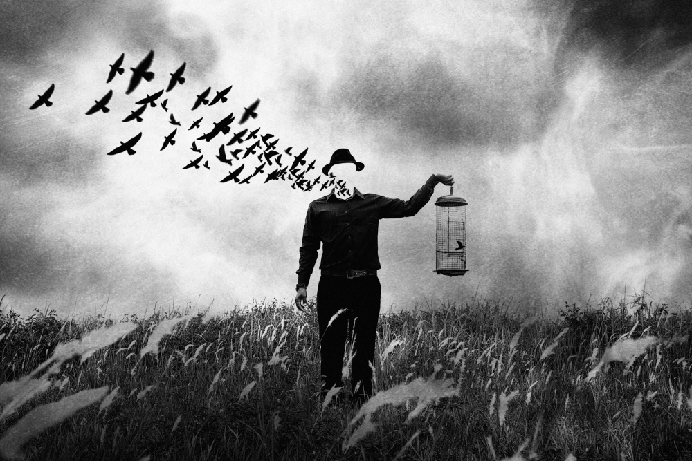 A piece of fine art art photography titled Freedom by jay satriani