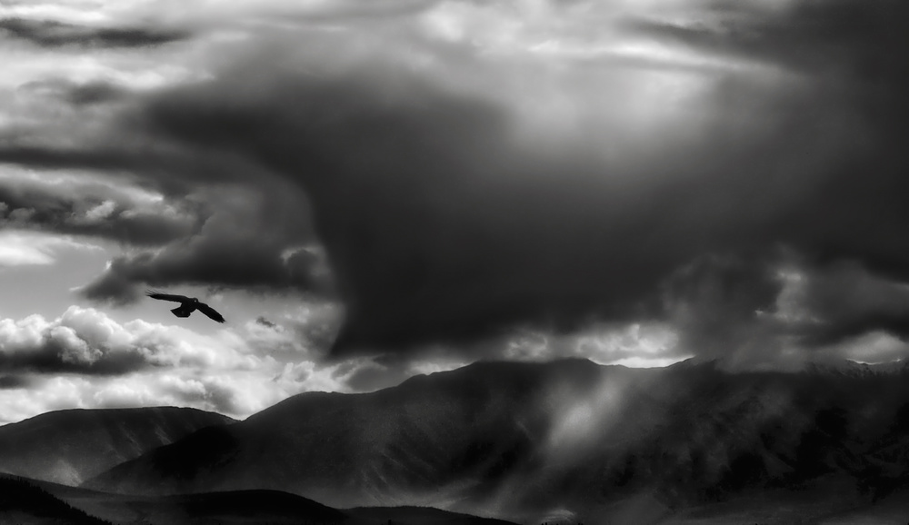 A piece of fine art art photography titled Thunderheads Are Shoe-thumping Fellows  by Yvette Depaepe
