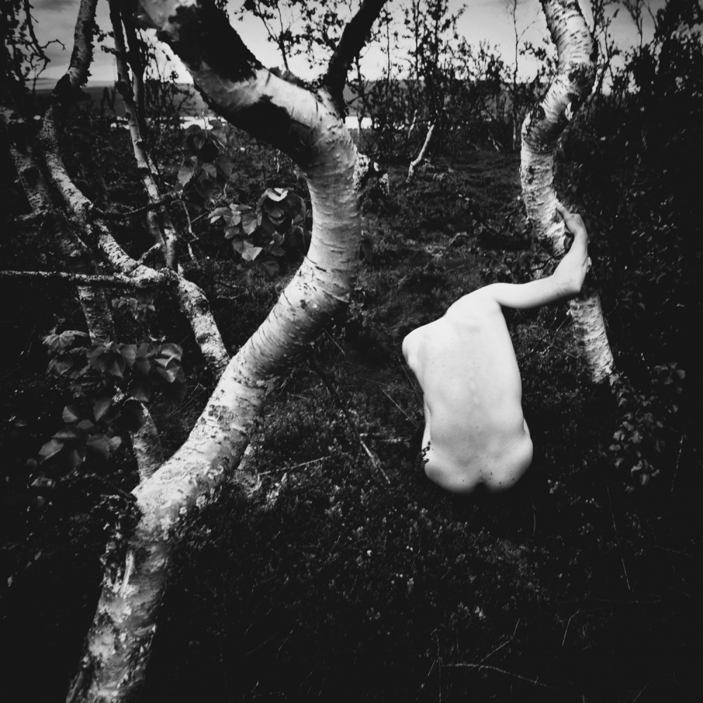 A piece of fine art art photography titled Distorted Creatures by Ondrej Cechvala