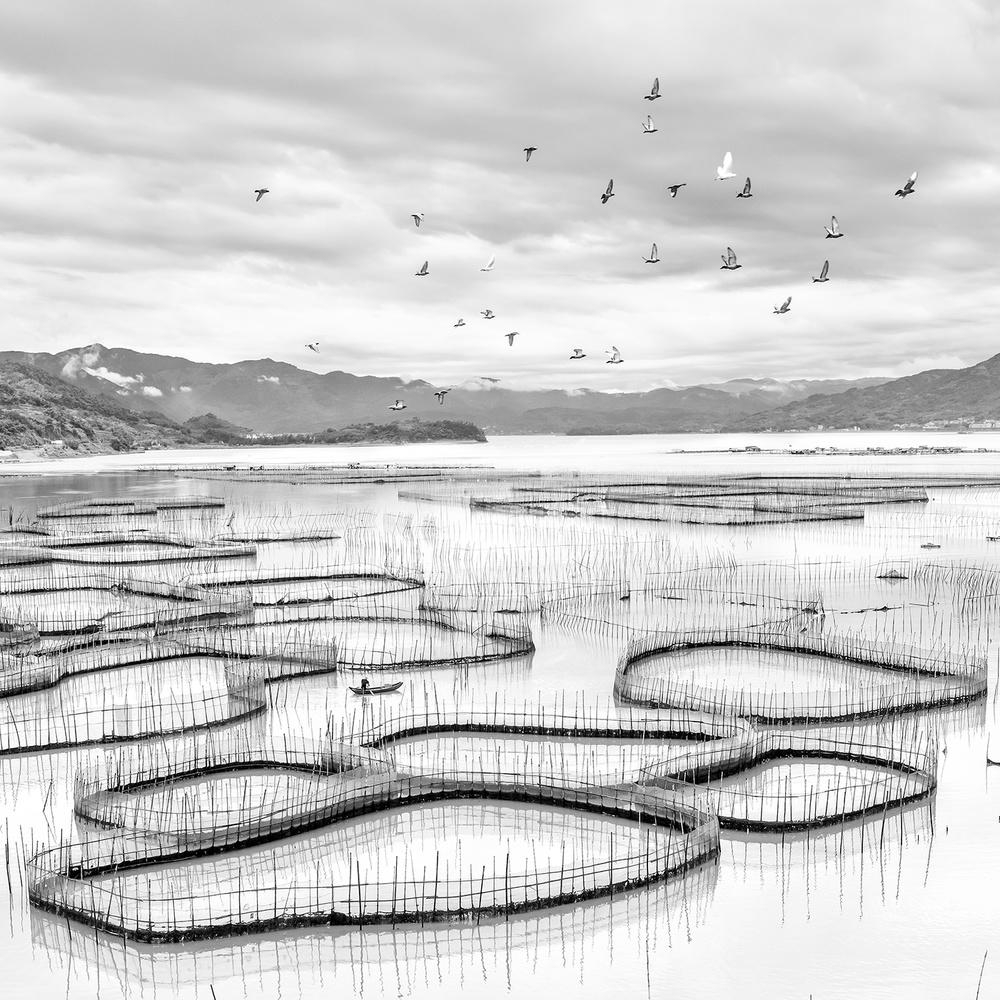 A piece of fine art art photography titled Sky and Net by Hua Zhu