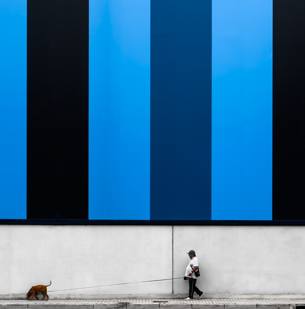 man with red dog on blue background