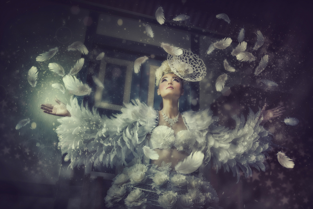 A piece of fine art art photography titled Feathers by MichaelHengChunKiat