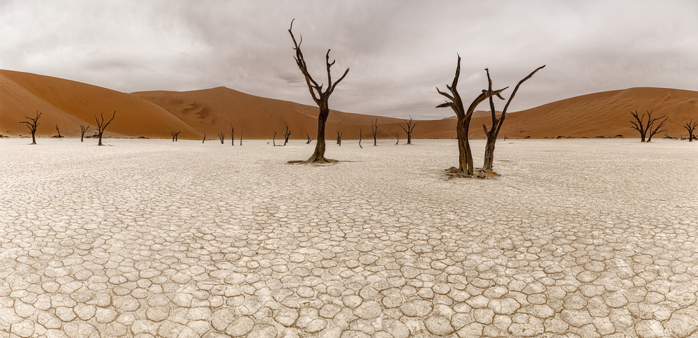 A piece of fine art art photography titled DEAD VLEI Namibia by Richard Le Manz