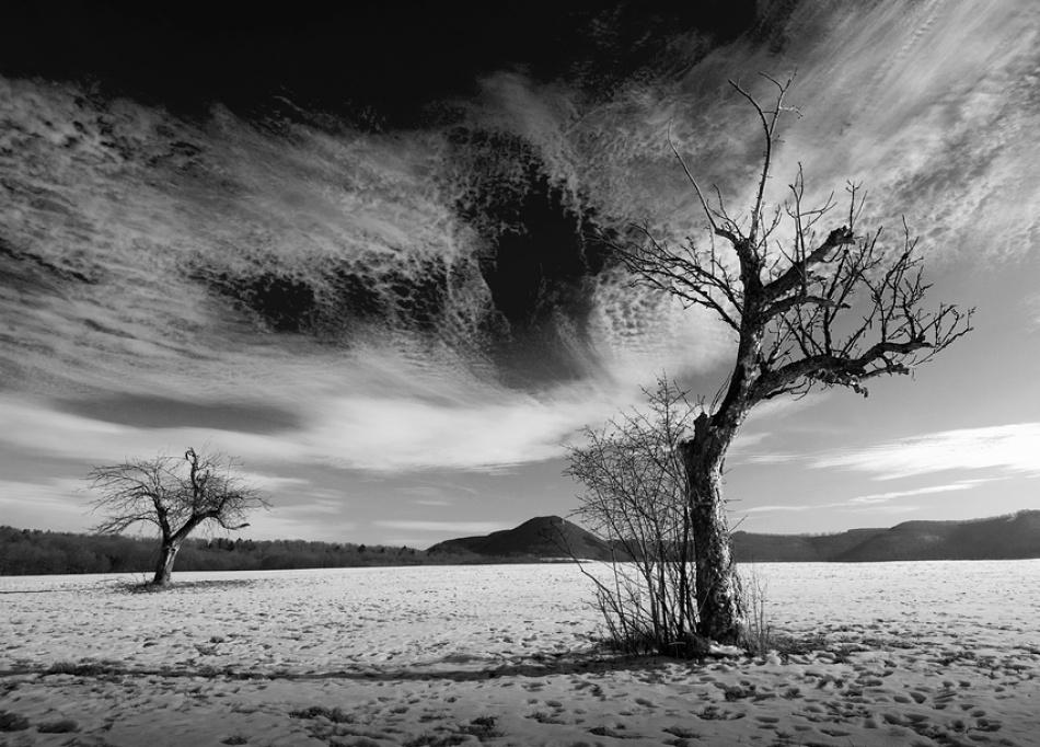 A piece of fine art art photography titled Skynews by kregon